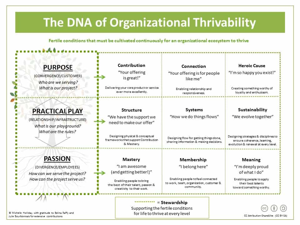 The DNA Of Organizational Thrivability