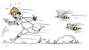 Future Proof Leadership - bees chasing man